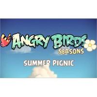 Yeni Heyecan; Angry Birds Seasons Summer Pignic