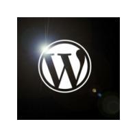 Wordpress Yazılarınızdaki Kelime Sayısını Gösterme