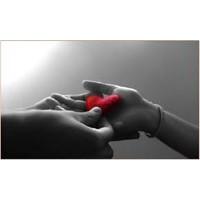 Sevgilinizin Karşılık Olarak İstediği 10 Şey