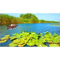 İstanbul'un En Güzel Gölü, Durusu (Terkos)