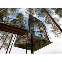 Mirrorcube, Ağaç Otel