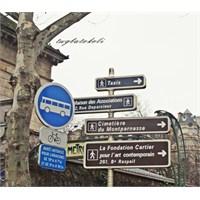 Paris: Montparnasse- Jardin Du Luxembourg