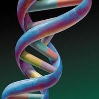 İnsan Genetiğinde Dev Keşif