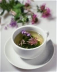 Baş Ağrısı İçin Bitki Çayı