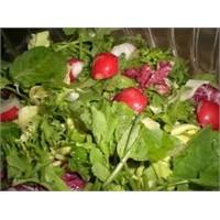 Detoksidan Salata