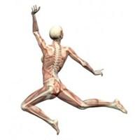 Güçlü Kemiklere Sahip Olmak İçin Besin Önerileri