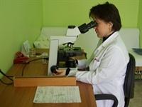 Patoloji Hakkında Genel Bilgiler