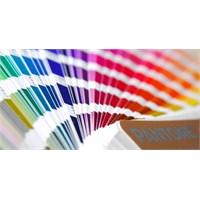 Tasarımcının Vazgeçilmez Silahı Renkler