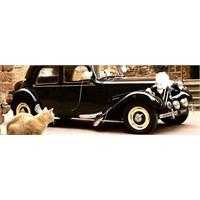 2013 Modern Ve Nostaljik Gelin Arabası Süslemeleri