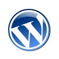 Wordpress Seo Link, Kalıcı Bağlantı Ayarları ?