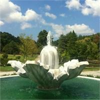 Cennetten Bir Köşe Atatürk Arboretumu