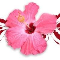 Parfümlerin Dili…