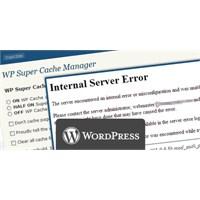 500 İnternal Server Hatasının Çözümü!