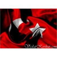 Türk Meselesi
