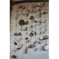 Deniz Kabuklarından Duvar Süsü
