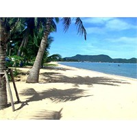 Pattaya...
