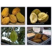 Asya'dan Beş Ölümcül Yemek
