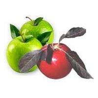 Elmadan Gelen Güzellik