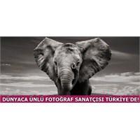 Dünyaca Ünlü Fotoğraf Sanatçısı Türkiye'de!