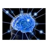 Beynini Beslemek İçin Bunları Yap