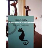Hayvan Öyküleri - Franz Kafka