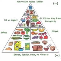 Beslenme Piramidi Nedir?