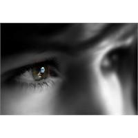 Ardından Göz Yaşı Dökmeyi Bırakın