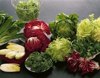 Zayıflatan Besinler Ve Sebzeleri Tanıyın