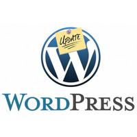 Ücretsiz Ve Kaliteli Wordpress Temaları