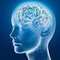 Beyinle İlgili İnanılmaz Gerçek