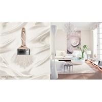 İnci Beyazı Duvar Boyası Rengi