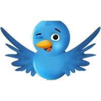 Bayanlar İçin Tweet Yazma Kılavuzu