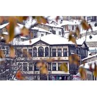 Sakarya Taraklı Evlerine Foto- Gezi Düzenlendi