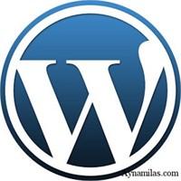Blogumda Kullandığım Wordpress Eklentileri