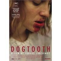 Kynodontos / Dogtooth (2009)