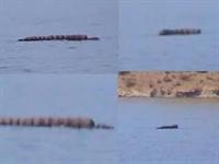 Van Gölü Canavarı Doğru Mu?