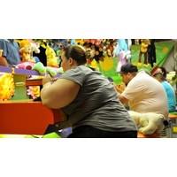 Obeziteyi Neler Tetikliyor?