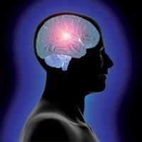 İnsan Beynine Benzeyen Bilgisayar Geliştirildi