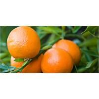 Clementine Portakalı Nedir?