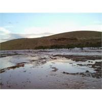 Şanlıurfa Bozova Köylerinde Sel Felaketi