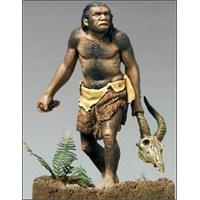 Mağara Hayatı, Testosteron Ve Yabaniliğimiz…