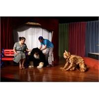 Çocuklara Tiyatroyla Hayvan Sevgisi Aşılayın