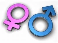 Cinsiyet Tahmini