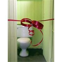 Dünya Tuvalet Günü`nde De Doğulur Mu?