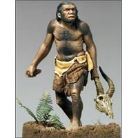 Mağara Hayatı, Testosteron Ve Yabaniliğimiz….