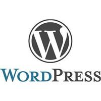 Wordpress Yeni Sürümü Hakkında Yenilikler