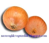 Şifalı Bitki Soğan