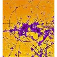 Cern'in Işıktan Hızlı Atom Altı Parçacığı Saptadı