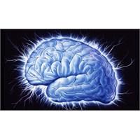 """Beyni Çalışırken """"Görmek"""""""
