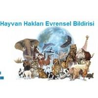 Hayvan Hakları Evrensel Bildirisi